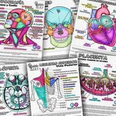 Sketch Med: Librito de Ilustraciones y Resúmenes College Nursing, Nursing School Notes, Medical School, Science Of Love, Science Notes, Medicine Notes, Medicine Student, Medical Quotes, Study Organization