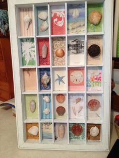 LOVE this idea - what a great way to display seashells from beach vacations!  Robin used a printer's tray.