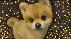 PCペイントで絵を描きました! Art picture by Seizi.N:   最近散歩していて良く見かけます、ポメ犬の柴犬カット可愛くて近寄ると吠えられます、そんなワンちゃんをお絵描きしてみました。  Priscilla Ahn Kaze wo Atsumete http://youtu.be/aB-YnWpDz5w