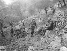 45th Infantry Division in Venafro Italy 1943 (www.eucmh.com)