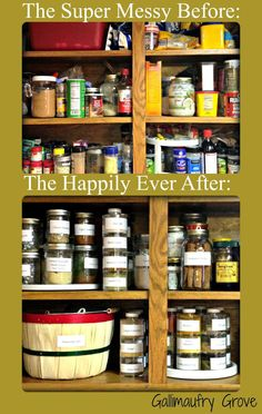 Gallimaufry Grove: A Spice Cabinet That Actually Stays Clean!