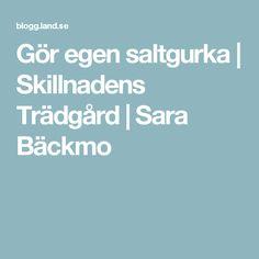 Gör egen saltgurka   Skillnadens Trädgård   Sara Bäckmo