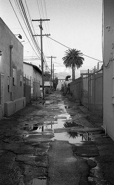 Motor/Venice, Los Angeles, California
