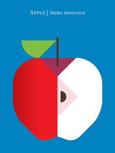 Fruit (continued) on Behance