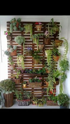 um up na decoração: faça um jardim vertical Garden wall, how cool would this be for outside an entry way, or even on a fence?Garden wall, how cool would this be for outside an entry way, or even on a fence? Small Outdoor Spaces, Outdoor Seating Areas, Small Patio, Small Terrace, Backyard Seating, Small Yards, Rustic Backyard, Wall Seating, Modern Backyard