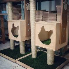 Cat Playground, arranhador para gatos, prateleiras para gatos, Cat Furnitures, móveis para gatos, Nicho para gatos La RoOteria Atelier