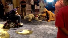 The service dog actually thinks that Pluto is another dog.  A Service Dog Meets Pluto aboard the Disney Fantasy