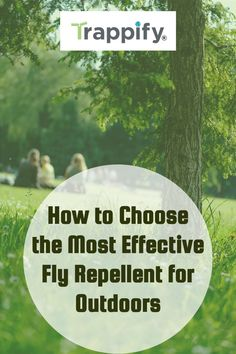Although some might consider using sprays or other chemical insecticides for handling their fly problems, there are other remedies to consider. Here are some tips for choosing the best outdoor fly repellent for your needs. Indoor Vegetable Gardening, Organic Gardening Tips, Hanging Plants, Indoor Plants, Plants That Repel Flies, Fly Spray, Fly Repellant, Pitcher Plant