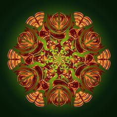 envol des papillons de l'esprit ! flight of butterflies of the mind ! vôo das borboletas da mente ! Mandala de Pierre Vermersch Digital Drawings