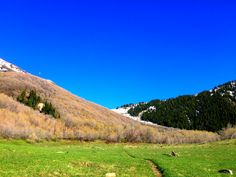 Actually seeing GREEN in the Wasatch Mountains for the first time since October! #hiking #camping #outdoors #nature #travel #backpacking #adventure #marmot #outdoor #mountains #photography