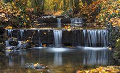 ruisseau bois des Templiers