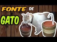 DIY: Como fazer um bebedouro para gatos com fonte ✤ Ajuda o gato beber mais água - YouTube