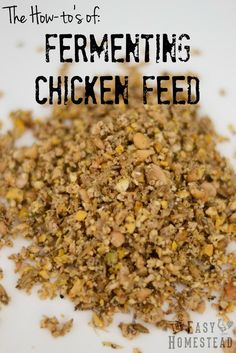 Fermented Chicken Feed | The Easy Homestead (.com)