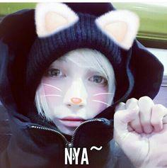 Neko Yohio :3
