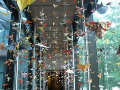 Origami Butterfly Art Installation - Crow Collection of Asian Art, Dallas, Texas