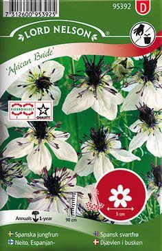 Med ett sirligt bladverk och vita blommor med mörka ståndare och frökapslar, är denna blomma söt och tuff på samma gång. Passar såväl i rabatten som i buketten. Frökapslarna är mycket dekorativa och användbara som torkade. Trivs i en näringsrik och väldränerad jord. Nigella, African, Bride, Landscape, Plants, California, Garden, Flowers, Wedding Bride