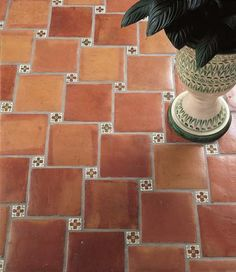 Elon Terracotta with Insets | Mexican Terracotta | Terra Firma Tiles