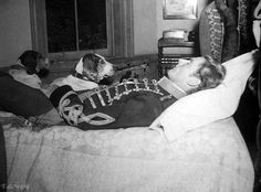 Errol Flynn and dogs take a nap between scenes of They Died With Their Boots On, 1941 Errol Flynn, Classic Movie Stars, Classic Movies, Vancouver, Sean Flynn, George Custer, Jack Warner, Captain Blood, Olivia De Havilland