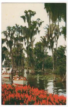 Vintage Cypress Gardens Florida Postcard, Sightseeing Boats, circa 1960s, $3.00 on Etsy