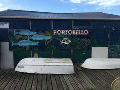 Portobello boat shed fish mural New Zealand Latest Stories, Short Stories, Flash Fiction Stories, Boat Shed, Quick Reads, Amazon Kindle, Portobello, New Zealand, Landscapes