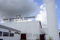 Adega de Cantanhede, Portugal