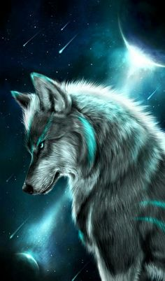Are You Searching for Wolf Wallpapers? then Here you can find the best and high-quality Wolf Images for mobile, desktop, android phone or iPhone. Unicornios Wallpaper, Animal Wallpaper, Colorful Wallpaper, Wallpaper Quotes, Black Wallpaper, Flower Wallpaper, Wallpaper Backgrounds, Wolf Photos, Wolf Pictures