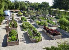 Patrick Dempsey Malibu raised bed vegetable edible kitchen garden Airstream ; Gardenista