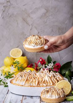 We hope your sweet tooth is ready to celebrate National Lemon Cream Pie Day on November 29. (Today we commonly call this lemon meringue pie.) Although this time of year is more typically associated with pumpkin pie, we'll take any excuse to celebrate any kind of pie—especially a pie that's been around this long. #merignuepie #foodblog #fandbrecipes Delicious Desserts, Dessert Recipes, Yummy Food, Lemon Cream Pies, Kinds Of Pie, B Recipe, Lime Recipes, Sour Taste, Lemon Meringue Pie