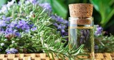 Υγεία - Έχει χρησιμοποιηθεί ως αρωματική ουσία σε καλλυντικά και σε φάρμακα κυρίως για τη γρίπη και τον πονοκέφαλο, αλλά πρόσφατες επιστημονικές μελέτες αποκάλυψαν