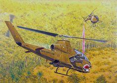 """Aerial fire support: AH-1G Hueycobra - OH-6A Cayuse""   Adam Hook"