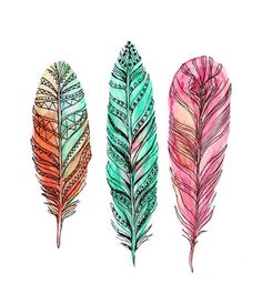 feather watercolour