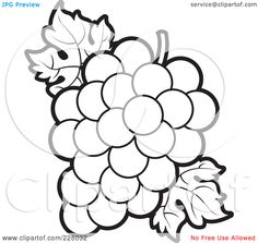Royalty Free RF Clipart Illustration Of A Coloring Page Outline Of A Bunch Of Grapes And Leaves 1024228032 jpg 1080× Coloring pages Grape bunch Flower outline