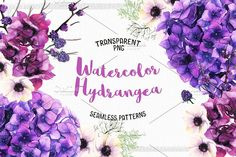 Watercolor Hydrangea by Spasibenko Art on @creativemarket