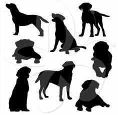 Dog outline