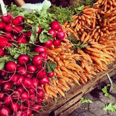 #farmersmarketnyc - Union Square Greenmarket via zengenius on Instagram - stacks of #radishes and #carrots in #Manhattan