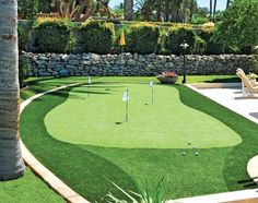 I'm bettin' I can find room for this out back. Chipping /putting area