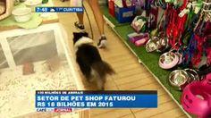 """""""O Grito do Bicho"""": Setor de pet shop cresce mesmo com crise"""