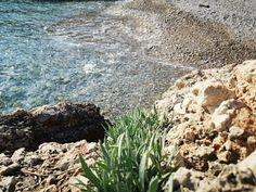 Εμπνεύσεις-Δημιουργίες-Μεταμορφώσεις: Κρίταμο Chios, Water, Outdoor, Gripe Water, Outdoors, Outdoor Games, The Great Outdoors