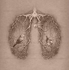 Lung birds