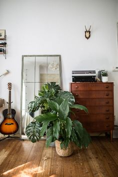 Urban jungle living room with vintage elements like a vintage sideboards and plank flooring