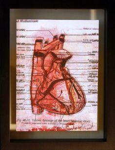 Heart Diagram Anatomy Medical Art Lithograph and by ANKarabin, $40.00