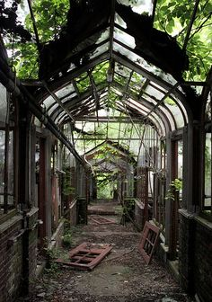 Greenhouse Hallway 2 | At the abandoned Boyce Thompson Agric… | Flickr