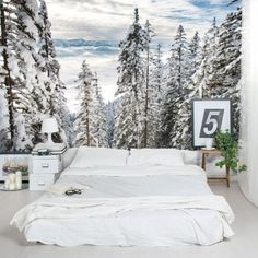 Charming forest themed wall murals wall murals murals for Abercrombie mural