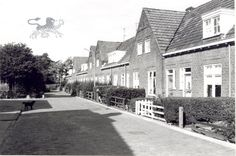 doniastraat 1973 Historisch Centrum Leeuwarden - Beeldbank Leeuwarden