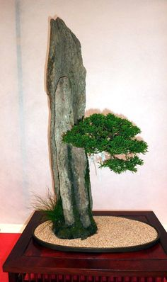 ISHITSUKI – Árvore sobre rocha Mais