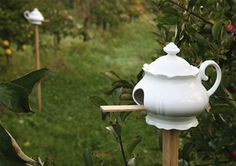 BirdPot: teapot turned bird house. my old copper tea pot that the spout broke off of!!  perfect.
