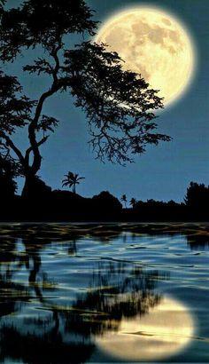 Night time. So peaceful.