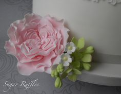 David Austin Sugar Rose by Sugar Ruffles