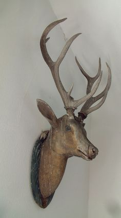 Antique deer head , wood carved deer heads & other hunt trophies - black forest Moose Deer, Oh Deer, Deer Antlers, Deer Heads, Wood Sculpture, Sculptures, Deer Mounts, Antler Art, Faux Taxidermy
