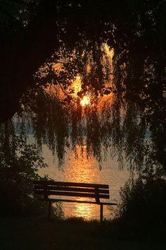 Sunset│Atardecer ... #Photo #Photography #Nature #NaturePhotography #Landscapes #Sunsets